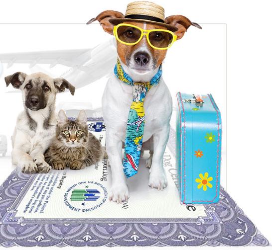 american service pets esa letter reviews is it legitimate
