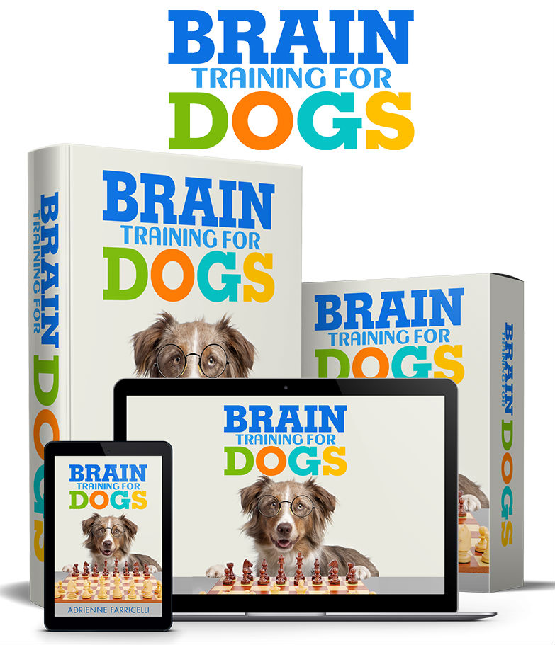 brain training for dogs program review does it work pdf guide