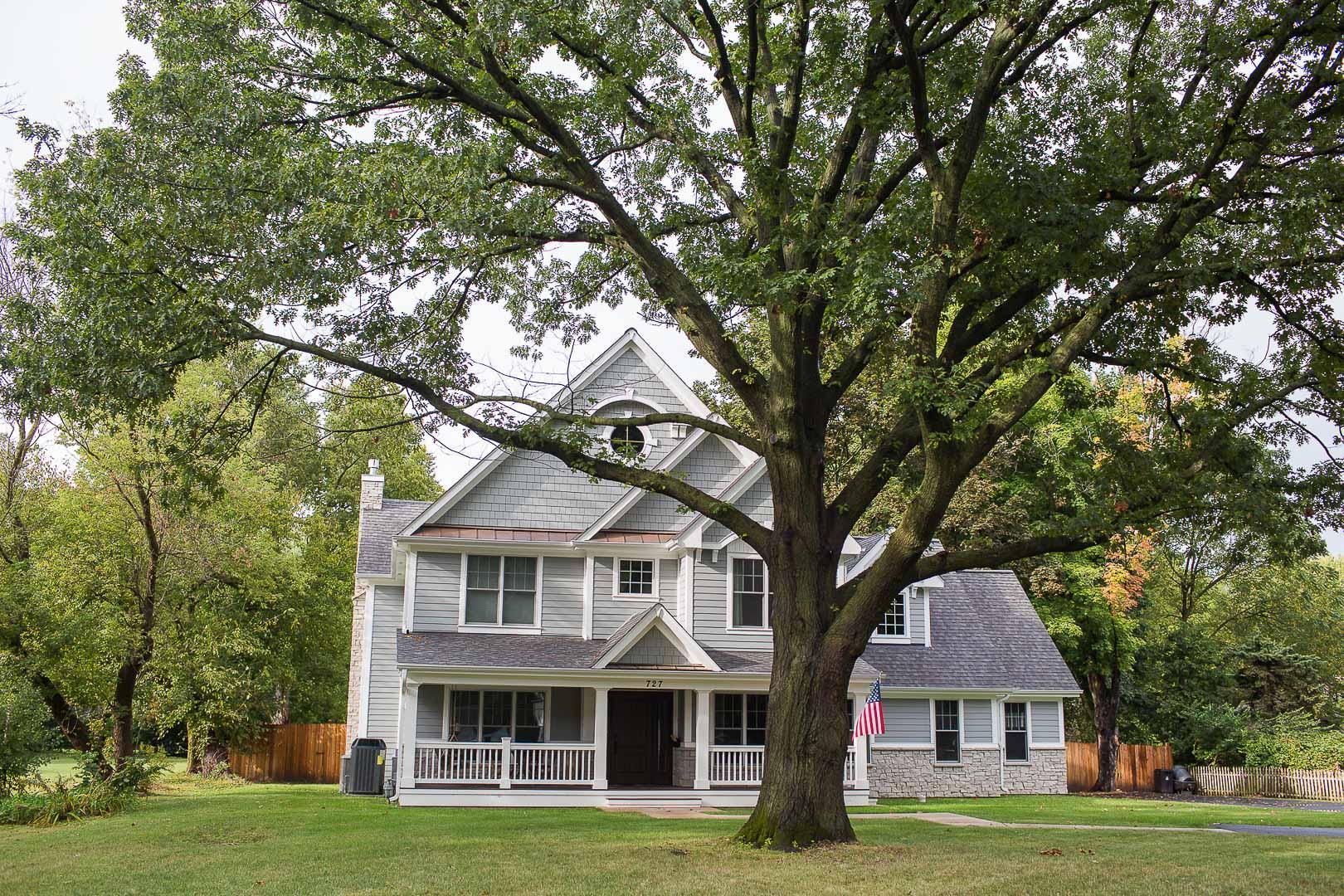 oak tree protection