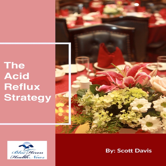the acid reflux strategy program book reviews does it work