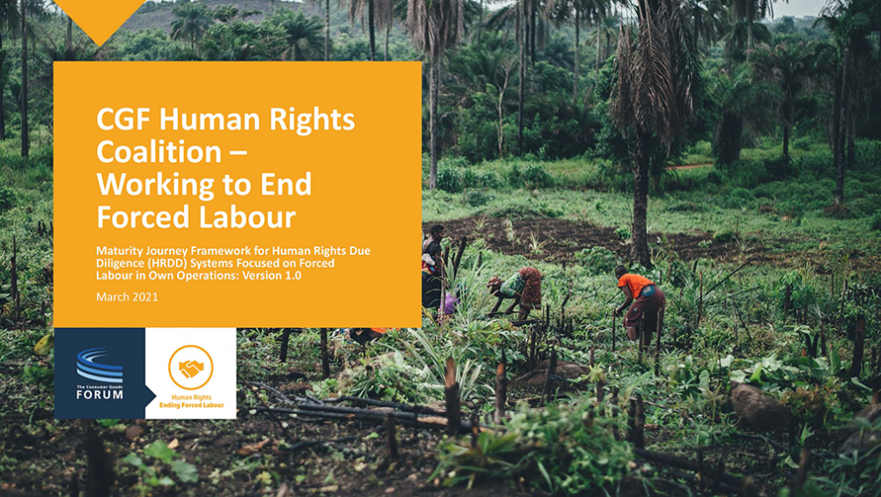 coalition of global consumer goods companies launches framework for the implementation of human rights due diligence systems in aligned approach against forced labour