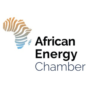nigerian petroleum minister timipre sylva to lead nigerian delegation to african energy week in cape town