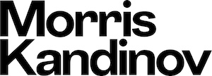 morris kandinov llp launches next generation securities shareholder rights law firm
